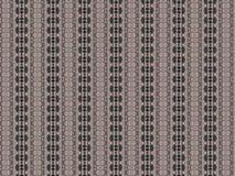 Моника 238 Стоковые Изображения RF