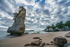 Монолит утеса песчаника, бухта собора, coromandel, Новая Зеландия 9 стоковое фото rf