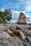 Монолит утеса песчаника за камнями в песке на бухте собора, Новой Зеландии 4 стоковые фотографии rf