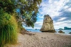 Монолит утеса песчаника за камнями в песке на бухте собора, Новой Зеландии 10 стоковое фото