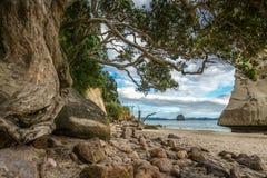 Монолит утеса песчаника за камнями в песке на бухте собора, Новой Зеландии 14 стоковые изображения rf