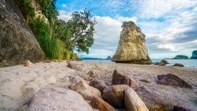 Монолит утеса песчаника за камнями в песке на бухте собора, Новой Зеландии 6 стоковое фото rf