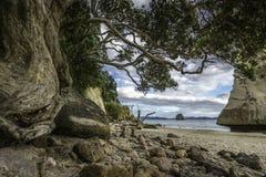 Монолит утеса песчаника за камнями в песке на соборе c стоковое изображение