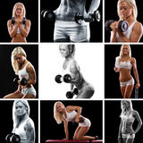 Монтаж тренировки веса стоковая фотография