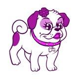 Мопс пурпура шаржа Стоковое фото RF
