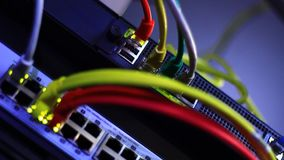 Моргать локальные сети