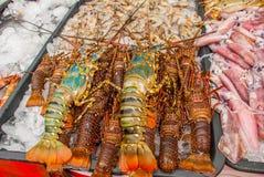 Морепродукты на льде на рыбном базаре Продажа Lobstery Стоковое фото RF