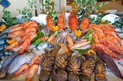 Морепродукты показанные для продажи на острове Крита, Греции стоковое изображение