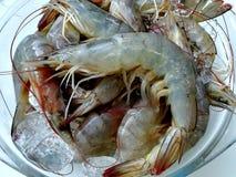 Морепродукты стоковое изображение rf