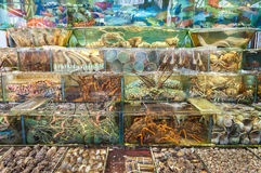 Морепродукты в реальном маштабе времени вне ресторана в Sai Kung, Гонконге Стоковые Фотографии RF