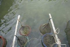 Морепродукты в рыбацком поселке Ninh ветчины малого пакета, славном море/пляже в Phu Quoc Стоковая Фотография RF