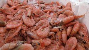 Морепродукты Креветка в коробке сток-видео