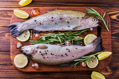Морепродукты 2 сырцовых радужной форели marinated с известкой, розмариновым маслом Стоковые Изображения