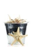 море ведра пляжа обстреливает сталь starfish Стоковое Изображение
