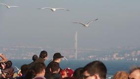 Море взгляда природы города Стамбула сток-видео