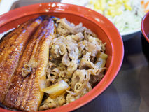 море вкусного лимона японии еды рыб свежего японского материальное сырцовое Стоковые Изображения RF