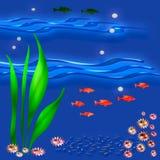 море вниз Стоковые Фото