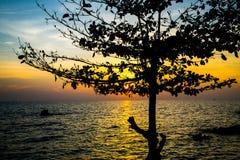 Море восхода солнца с деревом силуэта, островом Munnork Koh, заливом t Стоковые Фото
