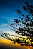 Море восхода солнца с деревом силуэта, островом Munnork Koh, заливом t Стоковые Изображения RF