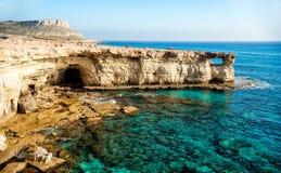 Море выдалбливает панораму стоковые фото