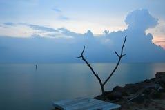 Море в утре стоковое изображение