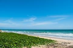 море в rayong, Таиланде Стоковая Фотография RF