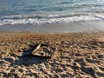 Море в suitecase Стоковое Изображение RF