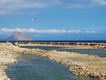 Море, гора и чайка Стоковая Фотография