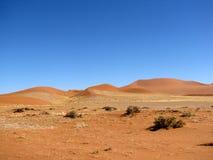 море дюны Стоковое Изображение