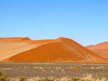 море дюны Стоковые Фото