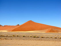 море дюны Стоковое Изображение RF