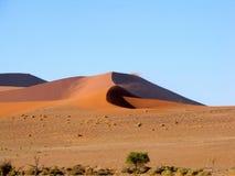 море дюны Стоковые Фотографии RF