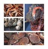 море еды Стоковое Изображение RF