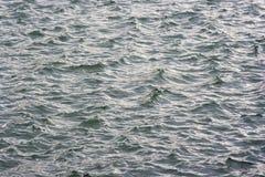 море земли Стоковые Изображения