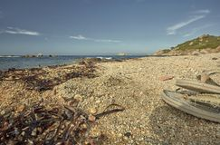 Море и песок с кувырками на пляже Стоковая Фотография