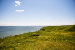 Море и поле зеленой травы Стоковое фото RF