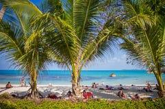 Море и пляж с ладонью кокоса на Lamai приставают к берегу внутри Стоковое Фото