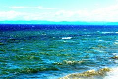 Море и чайка стоковое изображение rf