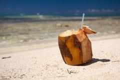 море кокоса коктеила пляжа карибское Стоковое Фото