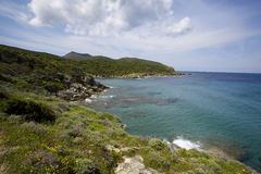 море Корсики стоковое изображение rf