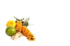 море лимонов имбиря крушины стоковое изображение