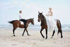 море лошадей groom невесты Стоковая Фотография RF