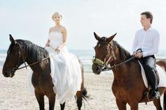 море лошадей groom невесты Стоковое Фото