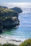 Море львов на пляже, Монтерей Стоковое фото RF