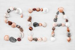 МОРЕ написанное с seashells на белой деревянной поверхности стоковое изображение