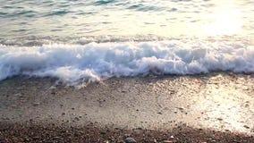 Море на заходе солнца сток-видео