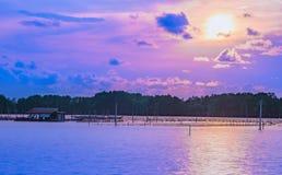 Море на лесе мангровы, выравнивая свет на заходе солнца стоковая фотография rf