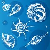 Море обстреливает декоративные значки Стоковые Фотографии RF