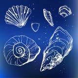 Море обстреливает декоративные значки Стоковые Фото