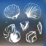 Море обстреливает декоративные значки Стоковая Фотография
